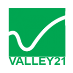 Valley 21 - logo oficial